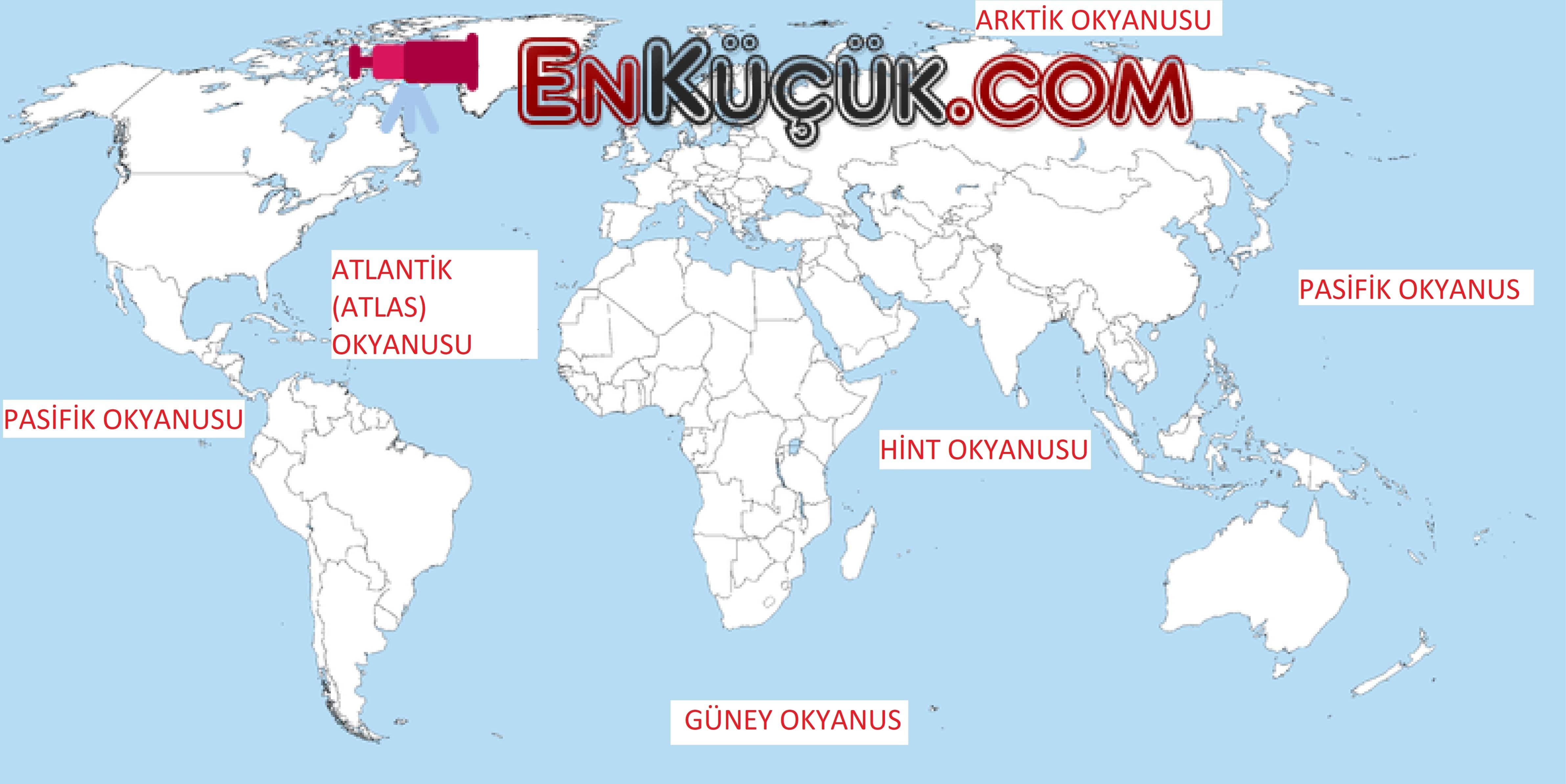 Türkiye'nin Gönüllü Ağaçlandırıcısı Anadolu Sincabı 83